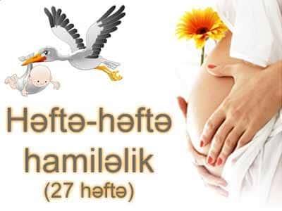 Hamiləliyin iyirmi yeddinci həftəsi
