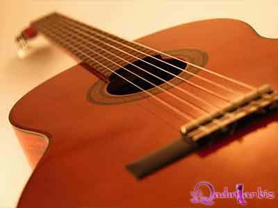 Gitara çalmaq istəyənlər üçün